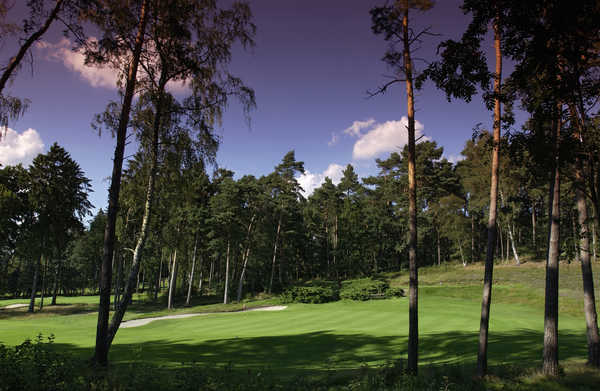 Hamburger Golf-Club e.V. Falkenstein