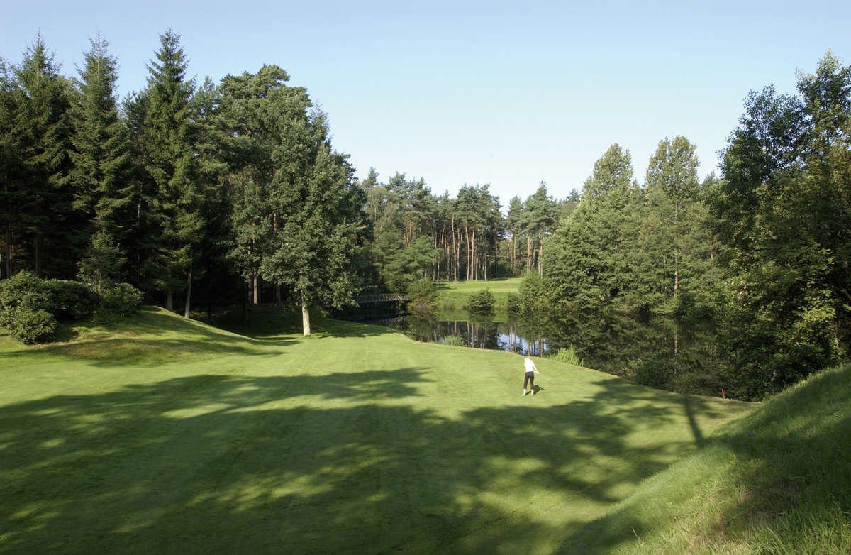Forest Pines Course Loch 12