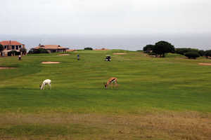 Mossel Bay GC