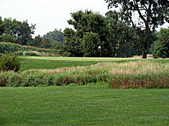 Bunker Links Golf Course