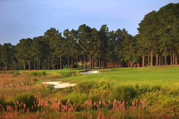 Pinehurst Resort #8