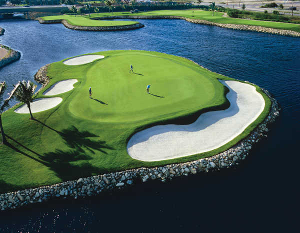 The Ritz-Carlton Golf Club (Blue Tip)