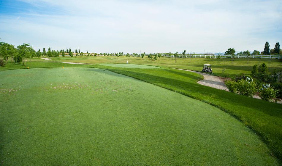10+ Golf crema gesgolf info