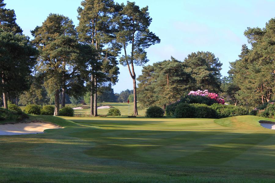 ferndown golf club  ferndown  united kingdom