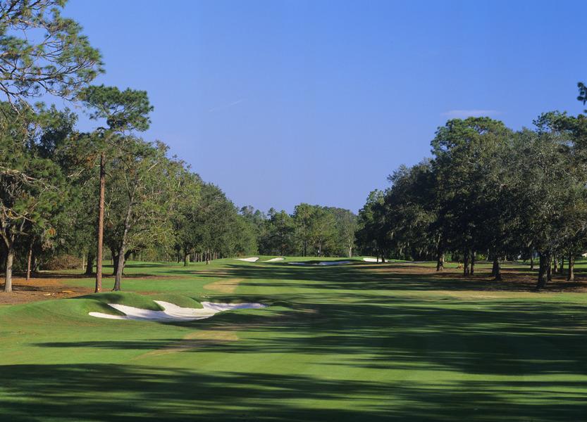 Ocala National Golf Club, Ocala, FL - Albrecht Golf Guide