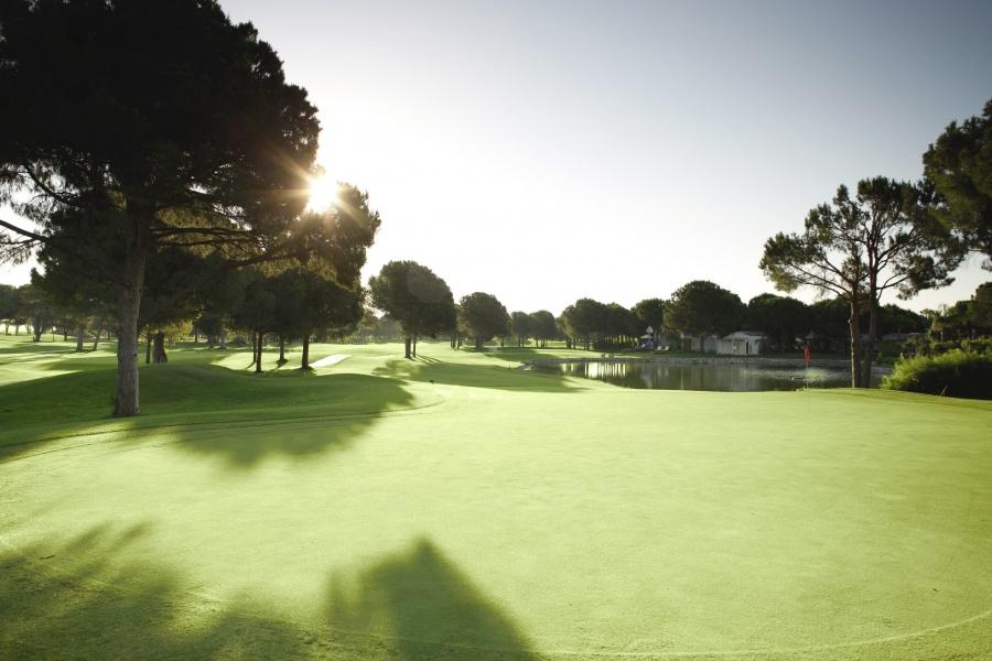 Robinson Nobilis Golf Club Full