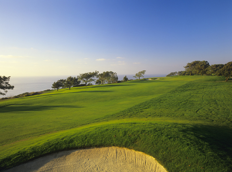 Hotels In Torrey Pines La Jolla Ca